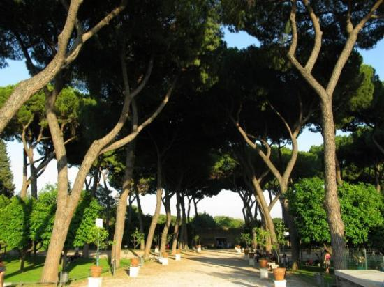 il-giardino-degli-aranci