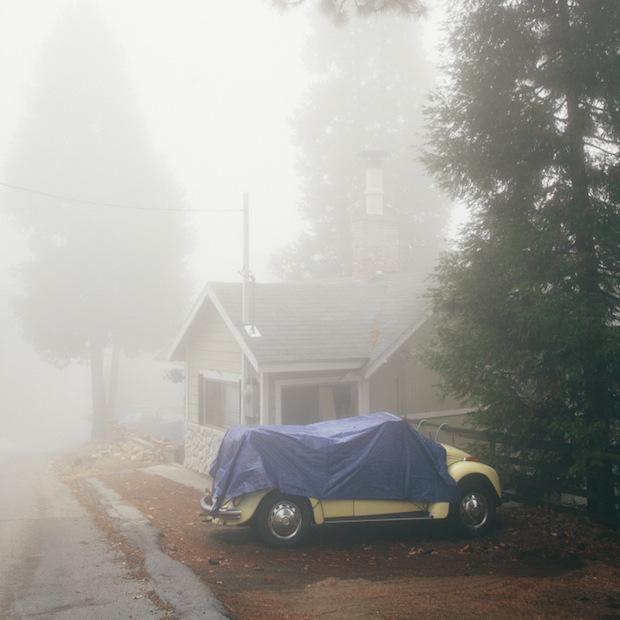 fogbug
